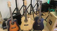 Gitarr Rea på Washburn (utförsäljning)