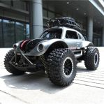 1:14 RC Speed King Off Road Car