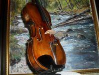 Violin/fiol, Matthias Alban Bolzano