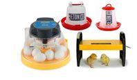 Äggkläckningsmaskin Brinsea Mini II Eco m m