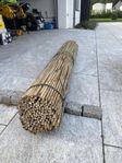 Bambupinne Bambupinnar