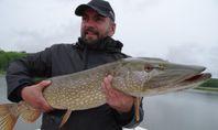 Fiskeguidning och fiskeäventyr på Åland